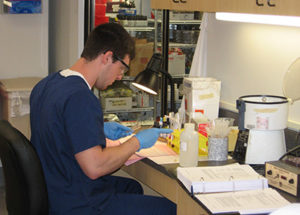 Student performing blood bank techniques in student lab