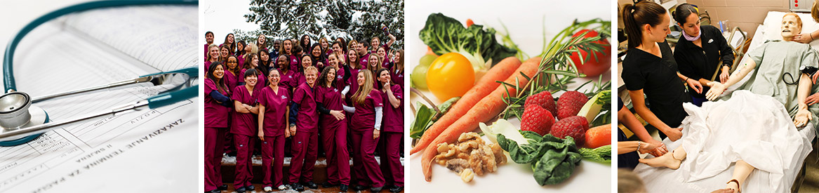 Accelerated Nursing Career Collage: Stethoscope, group of nurses, vegetables, testing on a mannequin