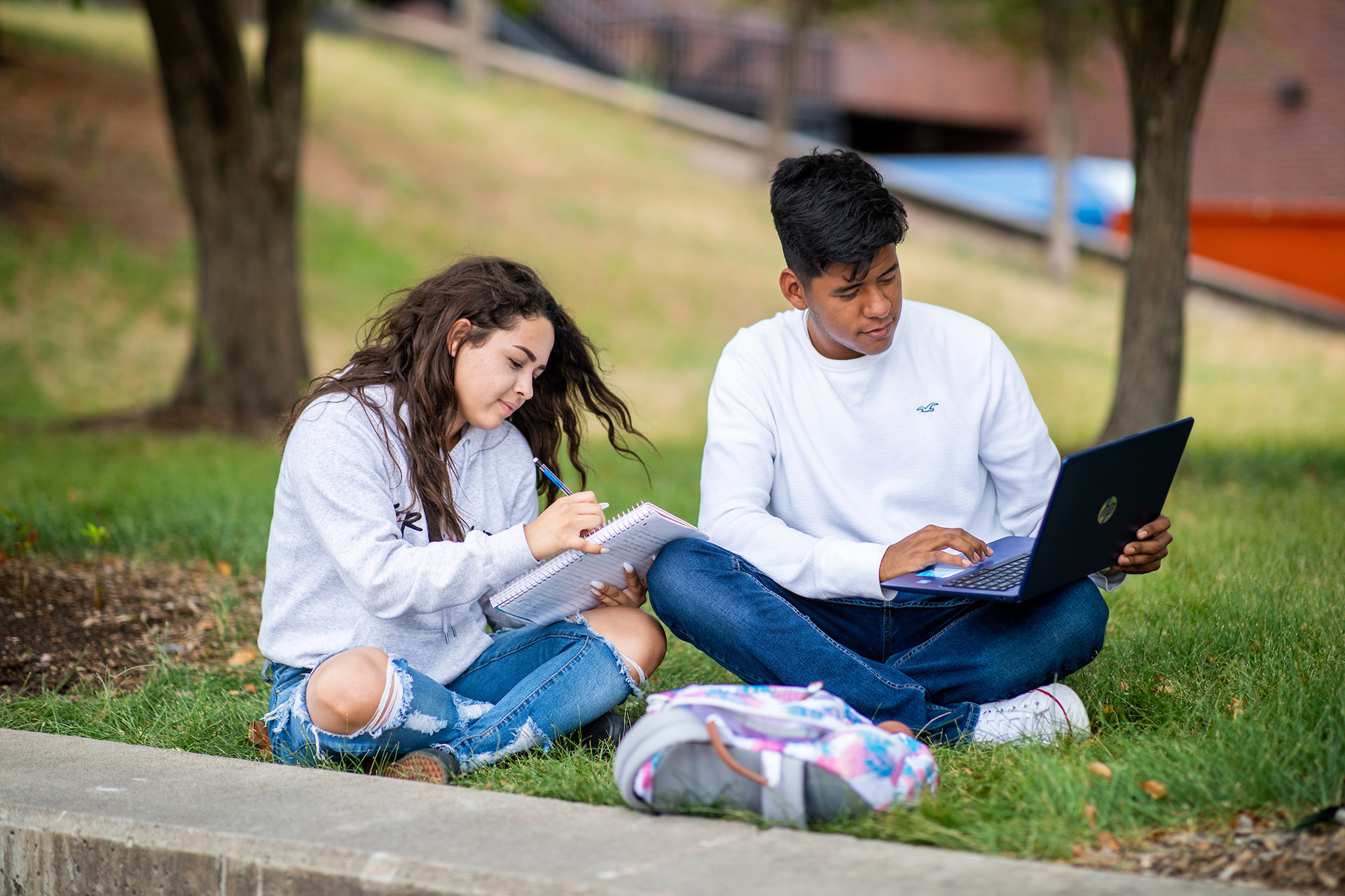 Two young students studying in a grassy area