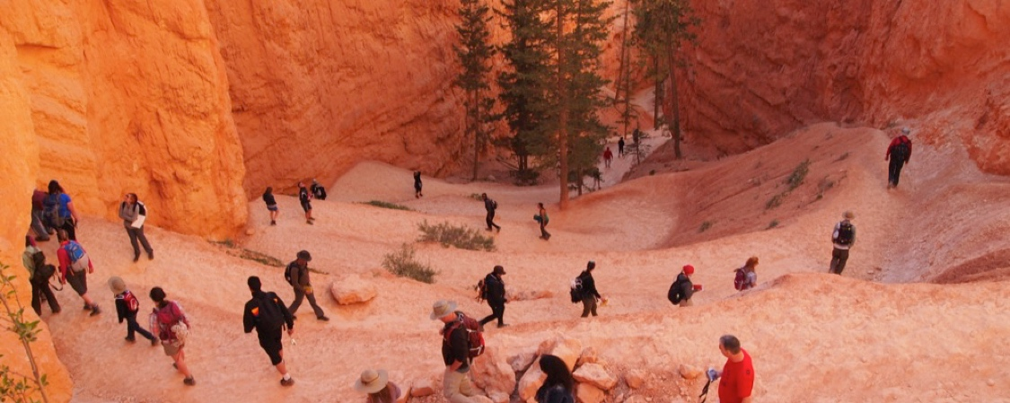 Geology Field Trip to Bryce Canyon