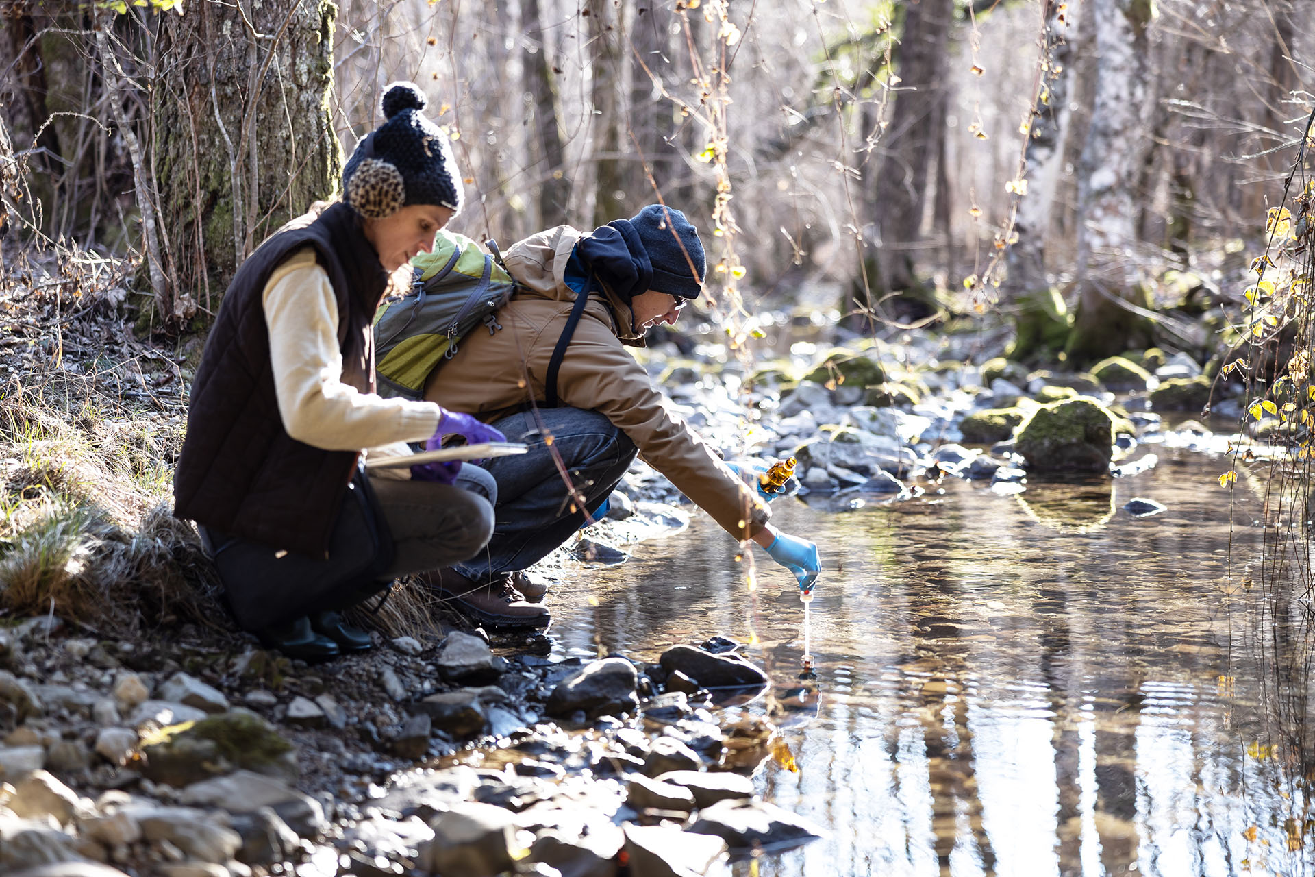nvironment Researchers Taking a Sample of Water in a Forest Stream.
